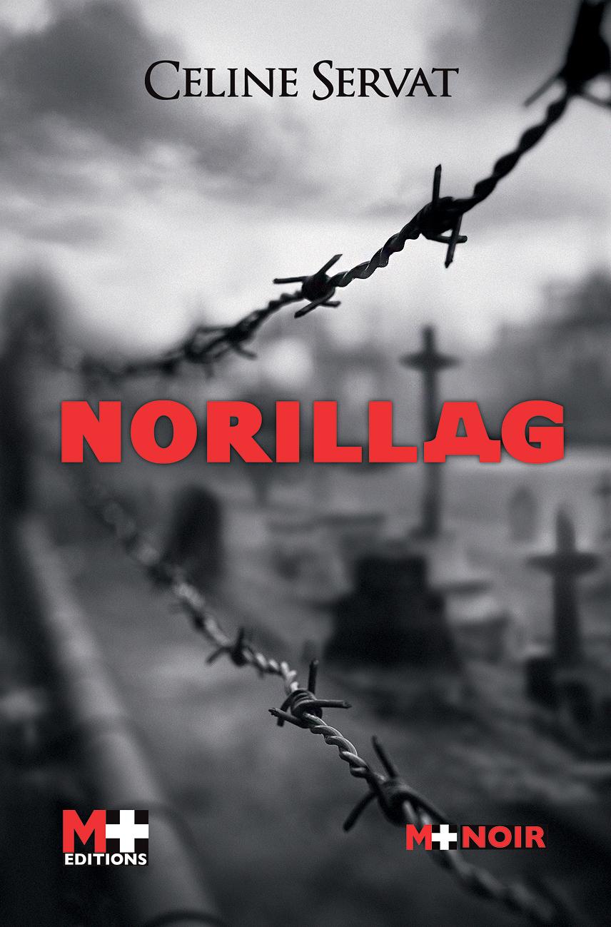 NORILLAG #2